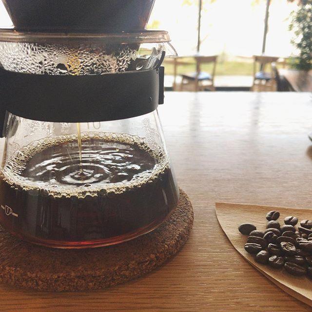 おはようございます。寒さが増してきましたね。暖かいコーヒーが恋しい季節になりました。…HAUS のカフェのコーヒーは、2007年、Decolleの2階でカフェを開始するときに選んで以来ずっと、丸山珈琲ブレンドを使用しています。モーニングのコーヒーももちろんこのブレンドです。暖かいコーヒーで、きっと心も体も温まります…。今日も一日、ご来店お待ちしておりますね。…morning9:00〜11:00(lo.10:30)lunch11:30〜14:00cafe14:00〜18:00dinner18:00〜21:00(lo.20:15)..#cafe #カフェ#haus_matsue#hausmatsue #松江カフェ #島根カフェ#松江 #島根#丸山珈琲#コーヒー#caffee