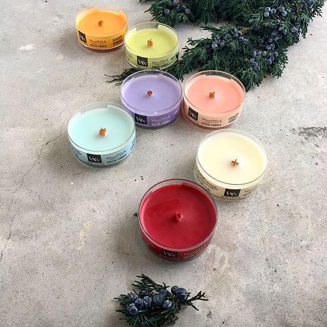 パチパチと薪が燃えるような音と暖炉のようにゆらめく炎が魅力的なウッドウィック。プチキャンドルがたくさん再入荷ですその他サイズもいろいろ入荷してます。Xmasギフトにもおすすめです .@haus_flower .#woodwick#ウッドウィック#木芯キャンドル #candle#candles #gift#Xmas#Christmas#hausmatsue #島根#松江