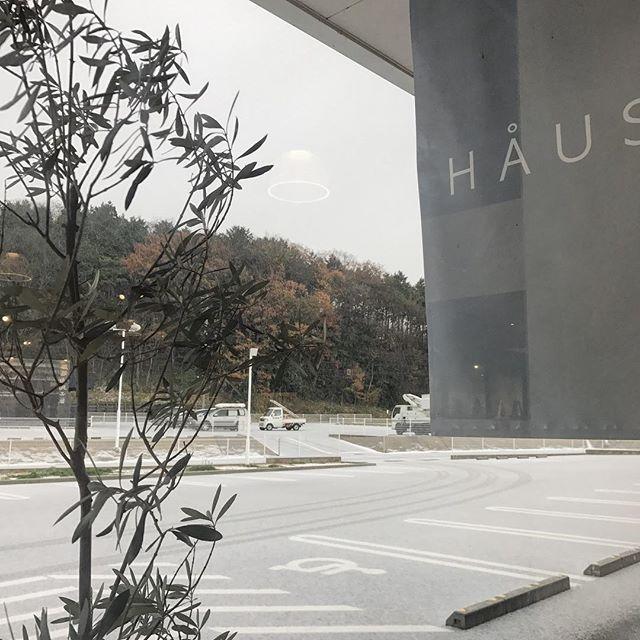 ..おはようございます◎モーニングオープンしました。今日の松江はうっすら雪が積もりましたね。お越しの際は気をつけてお越しくださいね。店内暖かくしてお待ちしております◎…ランチタイムの予約についてお知らせです。今までは平日の11時30分のみのご予約でしたが、土日祝のご予約も可能になりました◎お時間は11時30分のみのご予約となっております。…本日も21時まで営業しております。(ラストオーダー20時15分)たくさんのご来店お待ちしております♡ …#松江 #山陰 #島根#あられ #雪 #積もりました#haus_matsue#hausmatsue #カフェ#cafe#松江カフェ #島根カフェ