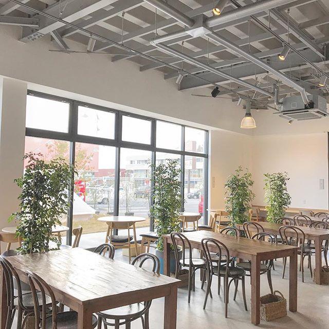 ..こんにちは◎HAUS bistro cafeから年末年始の営業についてのお知らせです。..30日 通常営業31日 お休み1日  お休み2日  通常営業3日  通常営業.年内の最終営業日は30日です。年明けは2日から営業いたします。31日と1日以外は通常営業いたしますのでよろしくお願いいたします♡morning 9:00〜10:30lunch  11:30〜14:00cafe  14:00〜18:00dinner  18:00〜21:00…今年もあと少しですね。たくさんのご来店お待ちしております!…こちらのページもチェックお願いします♡@haus_cafe_foods .#年末年始 #お知らせ#cafe #カフェ #haus_matsue#hausmatsue #松江カフェ #島根カフェ#松江 #島根