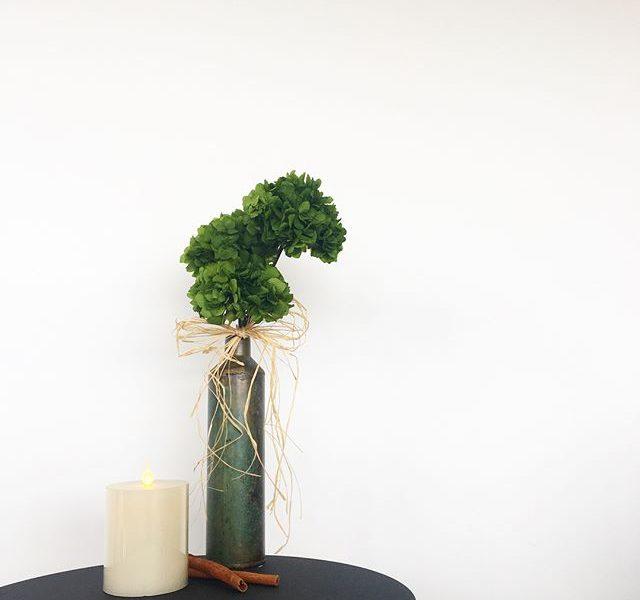 . 2月のプリザのレッスンは︎♢紫陽花のクラッチブーケ︎♢クラッチブーケとは英語で『ぎゅっと掴む』という意味を持つあえて茎の部分をみせて握る自然なスタイルのブーケのことです。あじさいの茎の部分がワイヤリングしてあるのでフラワーベースやバスケットに飾った時に向きや角度を自由に変えて楽しめます。.あじさいをA グリーンB ホワイトのどちらか選んでいただけます。A.B共に写真のアンティーク調アイアンフラワーベース付きです。.お問い合わせは担当の永島までどうぞ。090-7896-2944.HÅUSのプリザのInstagramアカウントはこちらです🕊@haus_flower ..#lesson#crutchbouquet #hydrangea #preservedflower #あじさい#紫陽花#hausmatsue #島根#松江