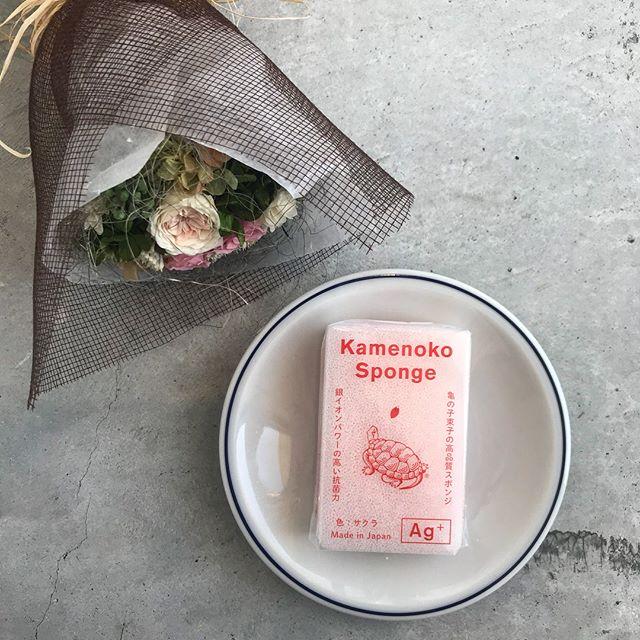 .あたたかくなってきて春が近づいてきた予感。商品も春の装いに。春限定パッケージ。かわいい桜の花びらが。スポンジの色もほんのりピンク色。普段の使いやすさと掴みやすさはそのまま。限定商品なので気になる方はお早めに。♡..@haus_zakka こちらも合わせてお願いします!..#亀の子#亀の子スポンジ #スポンジ#お掃除道具 #掃除道具#ピンク #桜色#桜 #春 #spring#hausmatsue #島根 #松江