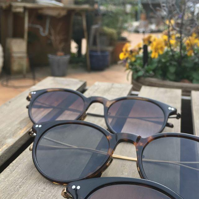 ようやくあたたかくなってきました・こんな日のドライブにはサングラスが必需品・偏光レンズも試してみてはいかがでしょうか?#オリバーピープルズ#leta・#生活に寄り添うメガネ#oliverpeoples #optical#めがね#hausmatsue #島根#松江#松江メガネ#新生活