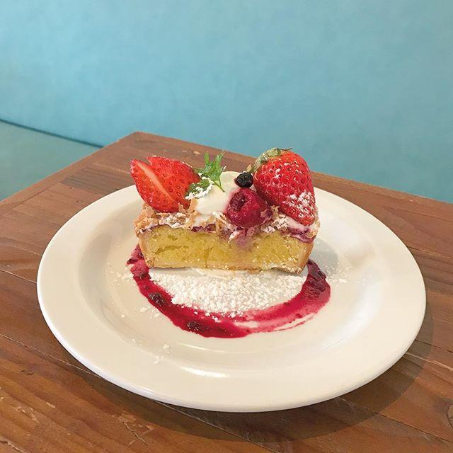 ..こんにちは〜︎.GW初日、気持ちのいいお天気でスタートしましたね〜!..さきほどいちごのタルトが焼きあがりました〜ほかにもチャイブリュレ、ガトーショコラ、メイプルシフォンケーキ、自家製アイスクリームなどたくさんスイーツご用意しております♡..本日もたくさんのご来店お待ちしております︎…#dessert #sweet #tarte #cake#いちごのタルト #いちご#ガトーショコラ#チャイブリュレ#メイプルシフォンケーキ #自家製 #アイスクリーム#cafetime #cafestagram #instafood #cafe #カフェ #カフェ巡り#haus_matsue#hausmatsue #松江カフェ #島根カフェ#松江 #島根