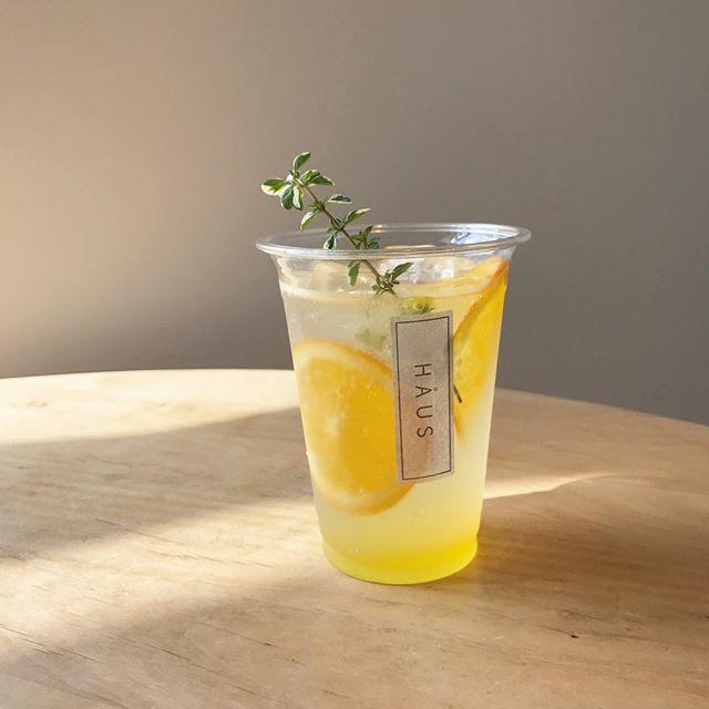 ..こんばんは〜本日は天気が悪い中朝からたくさんのご来店ありがとうございます!..◇写真< 柑橘ソーダ >.レモン、オレンジルビーグレープをシロップ漬けしてつくりました.柑橘の苦みと酸味がほどよいバランスで甘すぎないドリンクに仕上げました◎タイムの香りと柑橘、相性ばっちりです♡.テイクアウトも承っております。期間限定なのでぜひお試しくださいね◎…明日も朝9時からモーニング営業します!たくさんのご来店をお待ちしております。….#drink #ドリンク #期間限定 #夏限定#フルーツソーダ #soda#自家製シロップ #シロップ漬け#キウイミントソーダ#柑橘ソーダ#ラズベリーティーソーダ#ハーブ #ミント #タイム #ローズマリー#takeout  #テイクアウト#cafestagram #instafood #cafe #カフェ #カフェ巡り#haus_matsue #hausmatsue #松江カフェ #島根カフェ#松江 #島根 #山陰