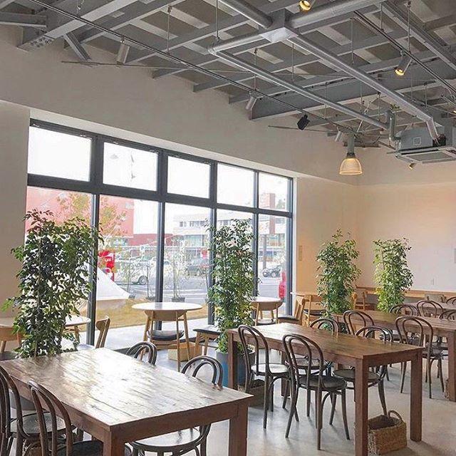 ..こんにちは〜︎本日もたくさんのご来店ありがとうございます!..HAUS CAFEより営業時間のお知らせです。.11.23(金)close 15:30l.o  15:00..団体様のご予約があるためディナーを貸切営業とさせていただきます。モーニング、ランチは通常通り営業しておりますがカフェの営業時間が変更となっております。大変ご迷惑をおかけいたしますが何卒、ご理解のほどよろしくお願いいたします。.※ショップの方は通常通り20時まで営業しております。…#hausmatsue #haus_matsue#松江カフェ #島根カフェ#松江 #島根 #山陰#営業時間のお知らせ#dinner