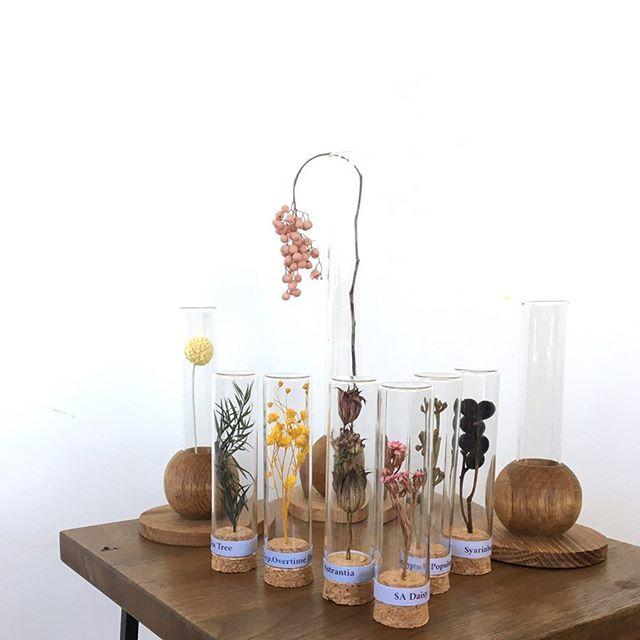 .妖しくも可愛い試験管とドライフラワー。小さく飾れてホコリがつかないのもうれしいところです。お部屋のアクセントにおすすめですHÅUSのプリザのInstagramはこちらからどうぞ↓@haus_flower .#試験管#ドライフラワー#プリザーブドフラワー#hausmatsue #島根#松江